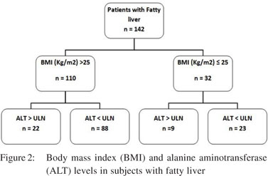 Non alcoholic fatty liver disease among visitors to a hepatitis thirty one subjects 218 with fatty liver had elevated alt level p0000 and possible nash which accounts for 334 31928 of the total visitors ccuart Gallery